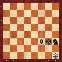 Check and Checkmate!