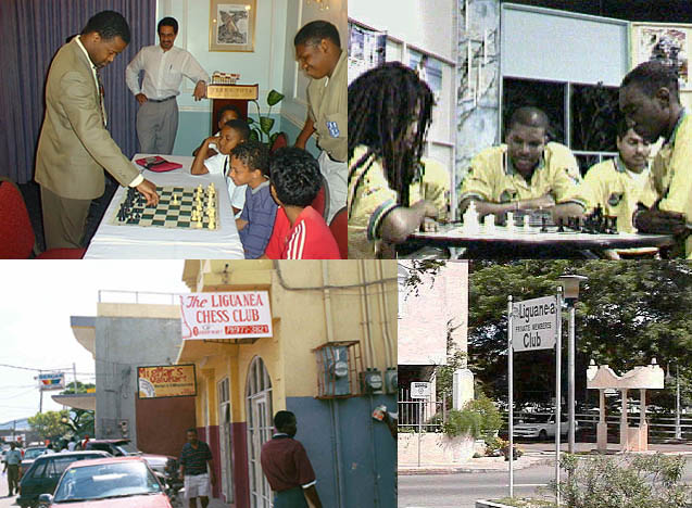 Jamaican Chess Collage