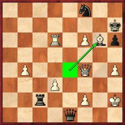 Adu played 46.Bxg6+! but after 46…Kxg6 47.Qg4+ Kf7 he erred with 48.Qh5+?? and resigned immediately due to the simple 48…Ng6. White mates with 48.Qg7+ Ke8 49.f7+ Ke7 50.Qf6#.