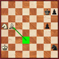 After 48.Bxb5 (diagram), can black win? Adu played 48…g4 here. What about 48.h5!?
