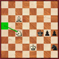 After 54.Nc4, white is poised to front the menacing pawns. Are there any chances here?