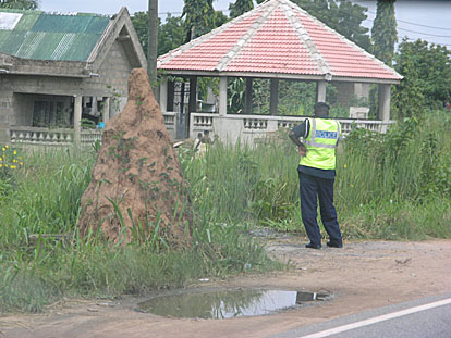Termite mound and Ghanaian police... both can pester you. Coming back from Cape Coast and heading to Tema, we were stopped several times. We had to give
