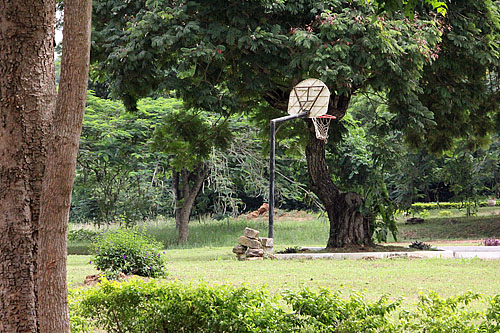 Could there be a Michael Jordan on the premises? Probably how Hakeem Olajuwon started in Nigeria.