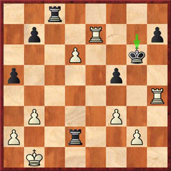 Anand-Gelfand (game 3 after 33...Kg6)